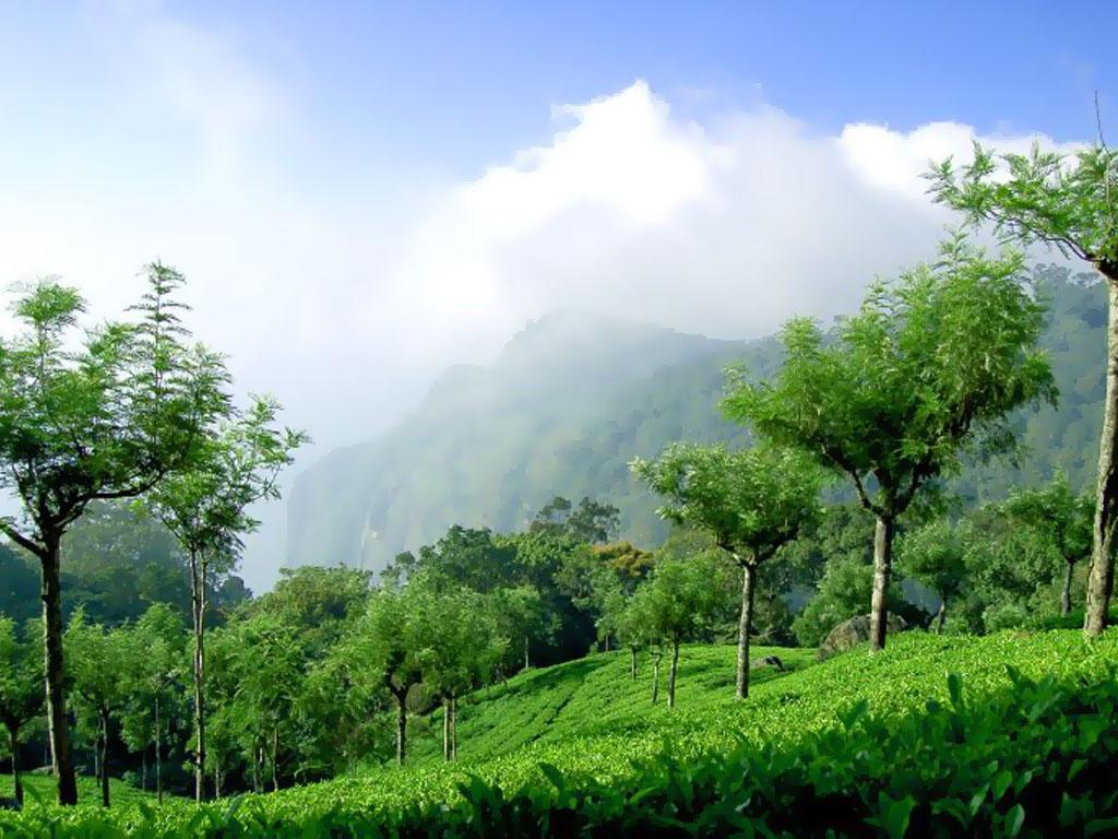 Coonoor-Tamil-Nadu