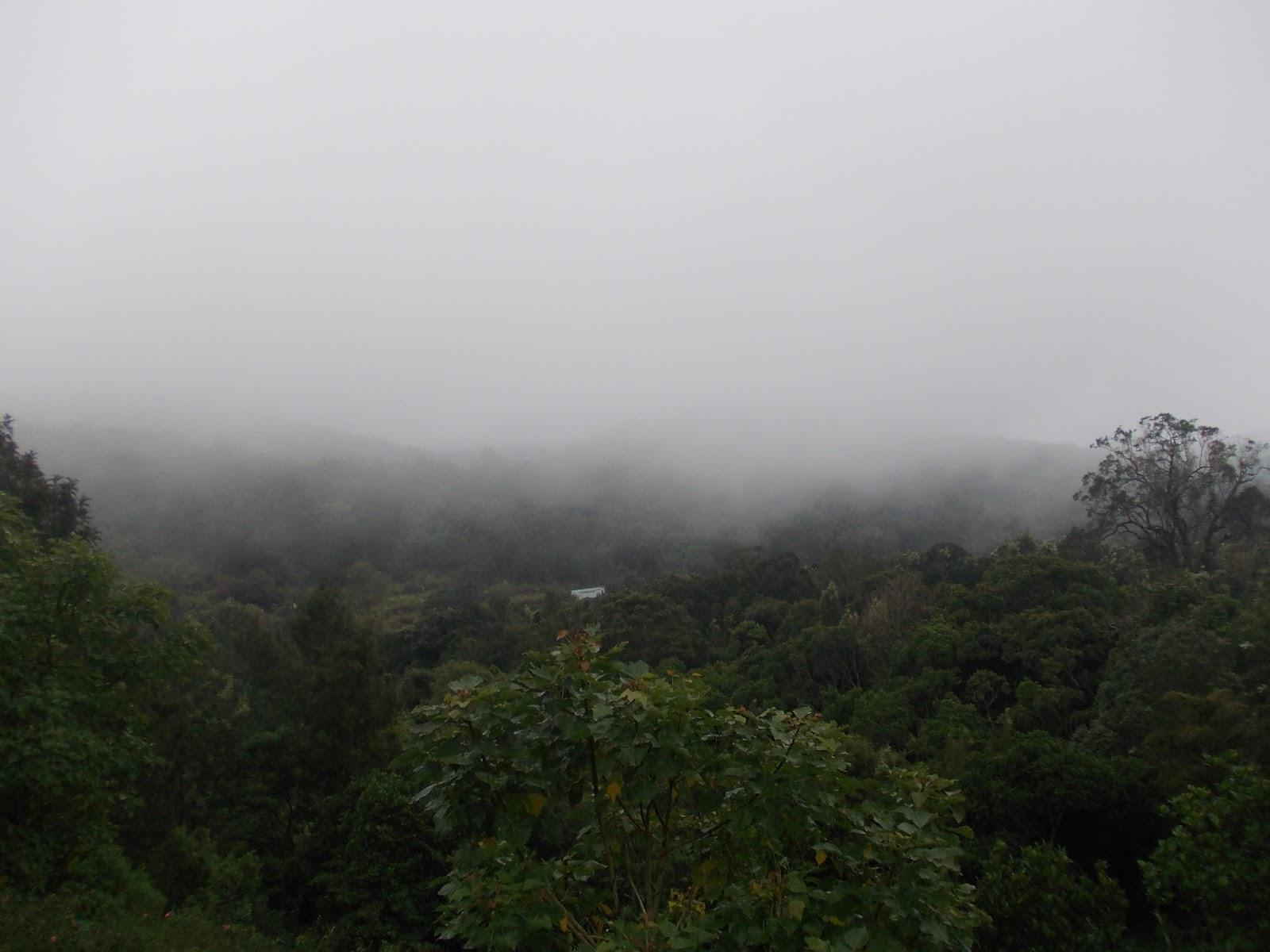 Kolli-Hills-Tamil-Nadu1