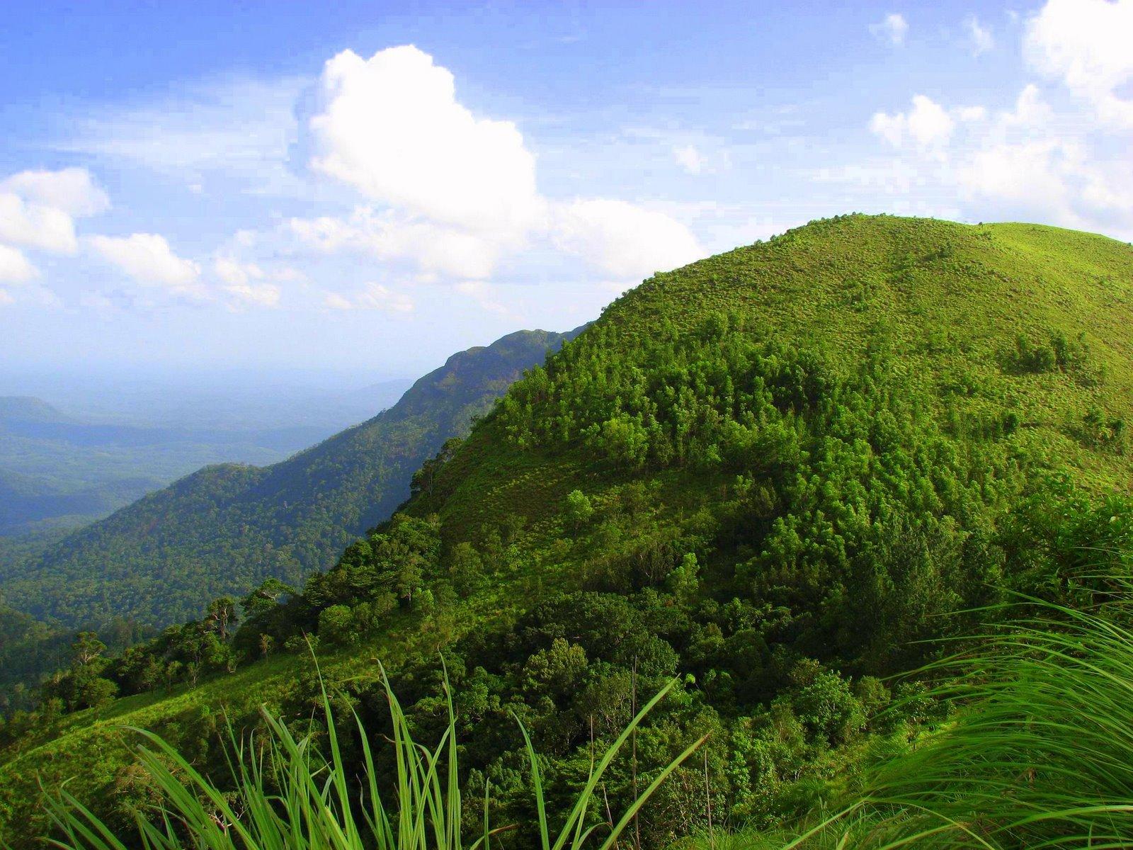 Ponmudi-Kerala