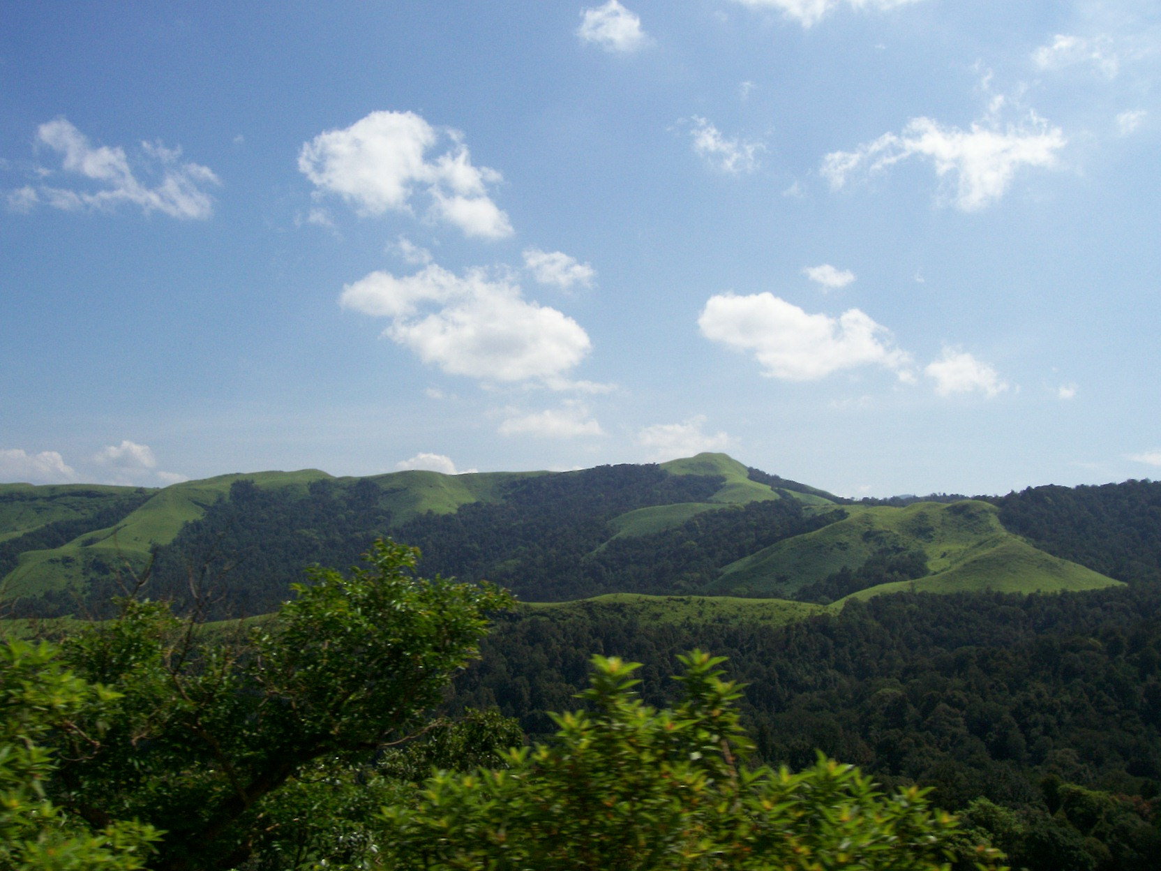 Kudremukh_national_park