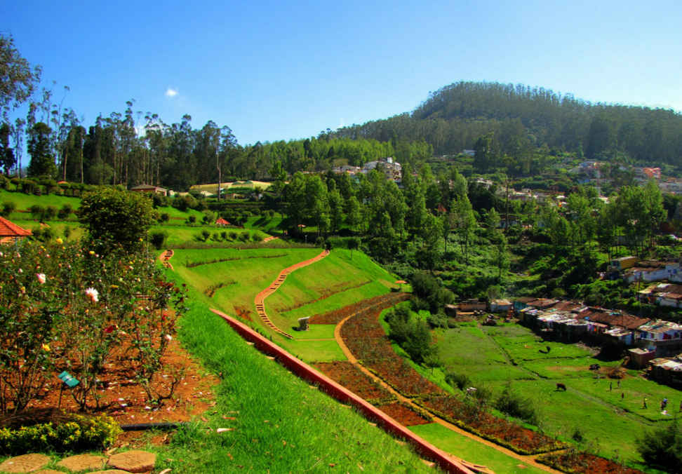 Botanical Gardens Ooty