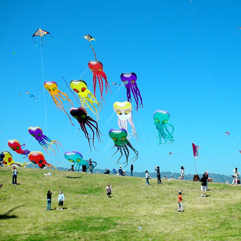 Soar High at the International Kite Festival 2017