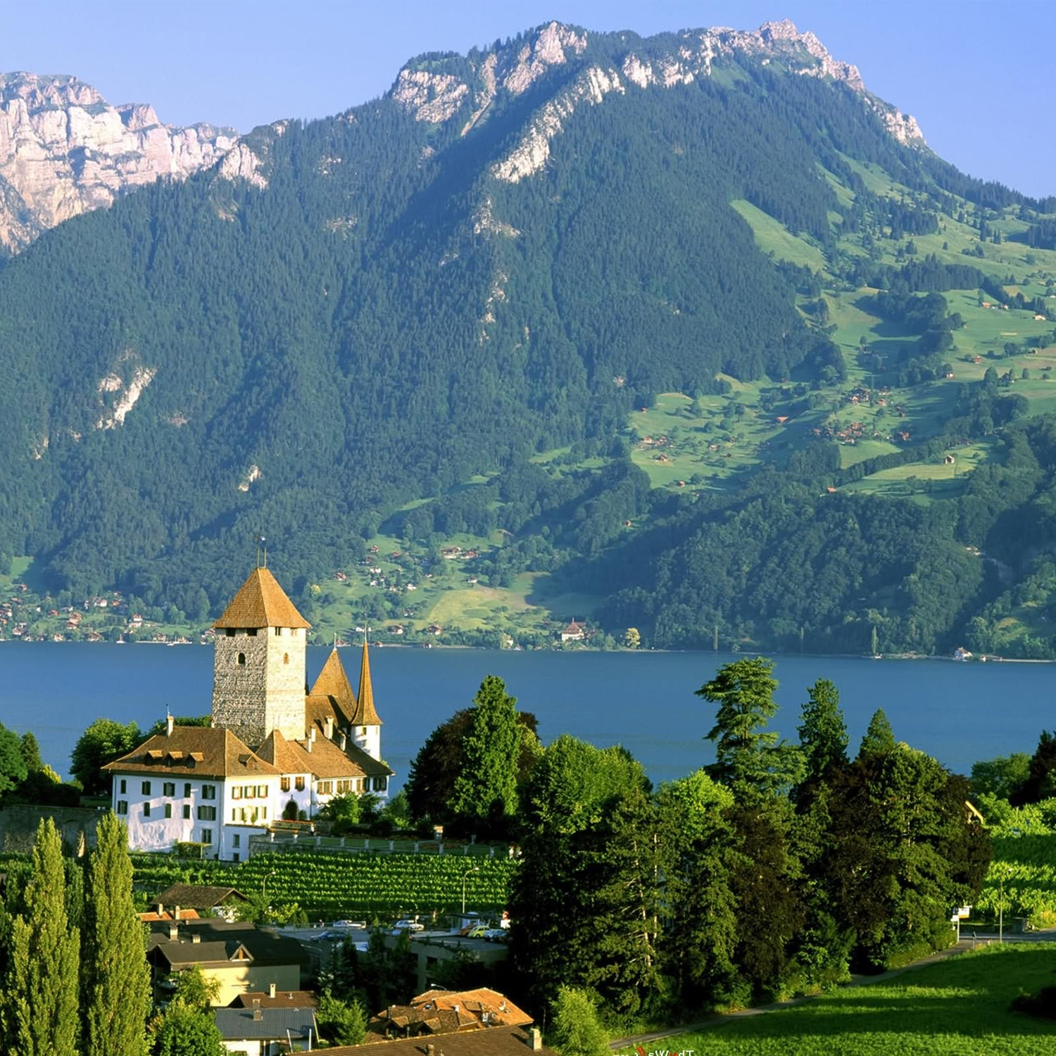 7 Quirky Things To Know About Switzerland